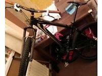 Custom Specialzied Bike £120 or offers