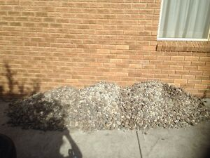 Garden fill river stones with limestone Margate Kingborough Area Preview