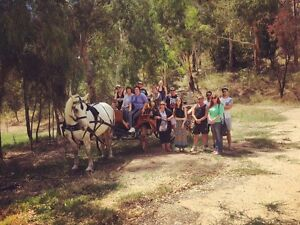 Classic Carriage Drives Montacute Adelaide Hills Preview
