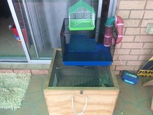 Rat and mouse cage. Capalaba Brisbane South East Preview