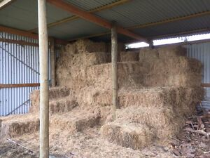Good quality pasture hay Lang Lang Cardinia Area Preview