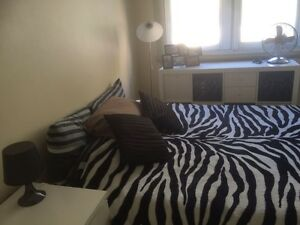 Bedroom for rent in Edgecliff Edgecliff Eastern Suburbs Preview