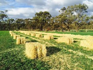 Oaten/Lucerne Hay Colac Colac-Otway Area Preview