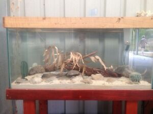 Reptile enclosure $80 Two Rocks Wanneroo Area Preview