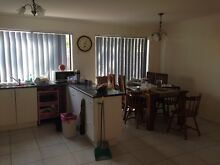 Room for rent $140 Cranbourne West Casey Area Preview