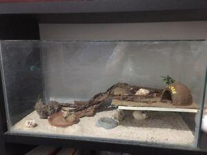 Crazy crabs Gosnells Gosnells Area Preview