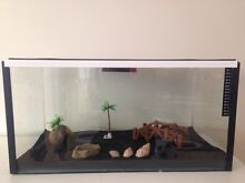 CRAZY CRAB/REPTILE TANK WITH HEAT PAD Byford Serpentine Area Preview