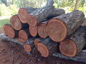 Firewood Jimboomba Logan Area Preview