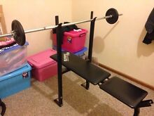 Weight bench fitness home press gym flat  with weight Mortdale Hurstville Area Preview