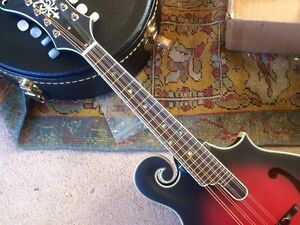 Michael Kelly F-5 mandolin Stanley Indigo Area Preview