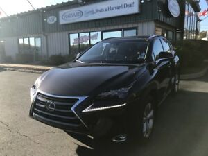2015 Lexus NX 200t EXECUTIVE EDITION