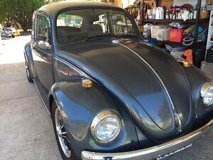 Volkswagen Beetle 1969 Leppington Camden Area Preview