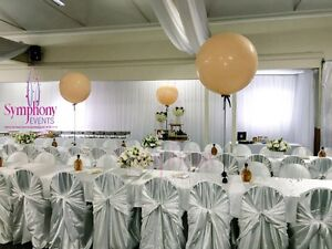 PARTY DECORATION(LOWEST PRICE) Ryde Ryde Area Preview