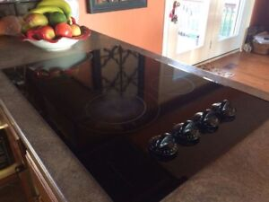 Frigidaire Counter Cooktop