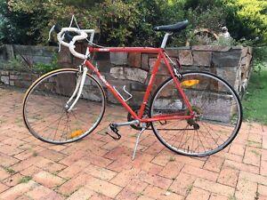 Apollo Racing Bike Singleton Singleton Area Preview