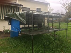 3 Bay Suspended Bird Aviary Murrurundi Upper Hunter Preview