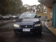 Honda Accord Phillip Woden Valley Preview