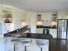 Entire Kitchens including appliances and dismantling Ashfield Ashfield Area Preview