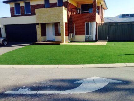 artificial grass master Perth Region Preview