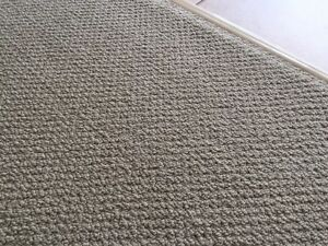 FREE CARPET! ... Southport Gold Coast City Preview