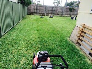 Cheap lawn mowing Blacktown Blacktown Area Preview