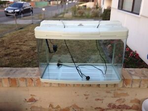 Fish tank Fairfield Heights Fairfield Area Preview