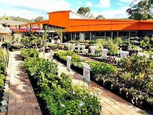 Busy Retail Nursery with Gift Shop & add your own Cafe! Point Clare Gosford Area Preview