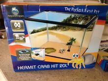 Hermit crab kit with 3 crabs Hendra Brisbane North East Preview