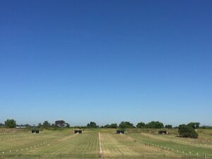 Private paddock 1.5 acres Bolwarra Maitland Area Preview