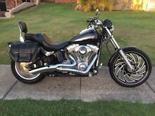 2012 Harley Davidson Softail Standard FXST 1690 Banksia Beach Caboolture Area Preview