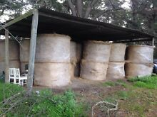 Hay & Silage  - livestock, cattle, sheep, horse feed. Officer Cardinia Area Preview