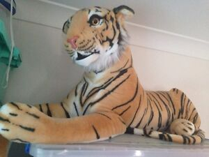 Large tigers 2 Woodridge Logan Area Preview