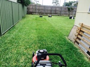 Cheap Lawn mowing & Gardening &Landscaping (Gutter Cleaning) Blacktown Blacktown Area Preview