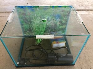 Small fish tank Heatley Townsville City Preview
