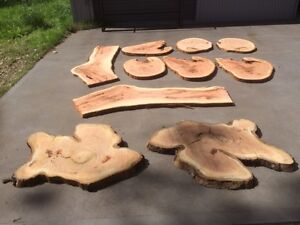 Live Edge Blackbutt and Grey Gum Wooden Timber Slabs East Maitland Maitland Area Preview
