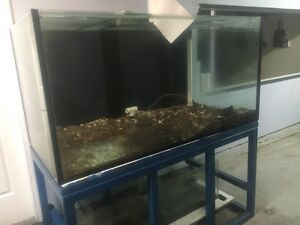 5 foot aquarium fish tank with accessories Aberglasslyn Maitland Area Preview