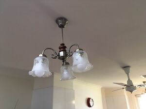 Quality glass light fittings x 2 Rose Park Burnside Area Preview