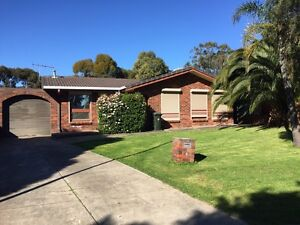 House rent Athelstone Campbelltown Area Preview