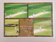 Kane Williamson print Beaudesert Ipswich South Preview