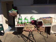 Birds for sales Bankstown Bankstown Area Preview