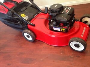 Free-Del  Victa Charger Fantastic condition 4 stroke Parramatta Park Cairns City Preview