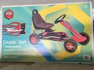 Brand new pedal go kart Largs Maitland Area Preview