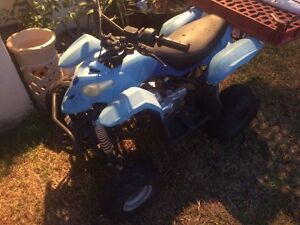 110cc quad needs tlc Cessnock Cessnock Area Preview