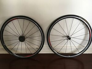 SHIMANO Wheels (quick release hubs) Bellevue Hill Eastern Suburbs Preview