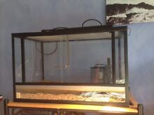 Reptile tank Chittaway Point Wyong Area Preview
