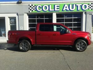 2016 Ford F-150 XLT FX4 302A