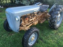 Ferguson FE35 Petrol Tractor. Low hours. Cygnet Huon Valley Preview