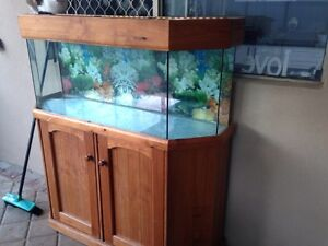 Large fish/reptile tank and stand Balcatta Stirling Area Preview