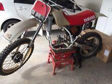 1984 Yamaha YZ 250 Windella Maitland Area Preview