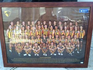 Signed 2008 hawthorn team photo, framed Heathfield Adelaide Hills Preview